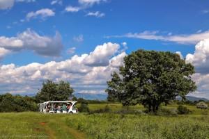 Visite del Parco Rurale