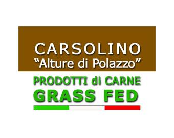 logo-carsolino-shop